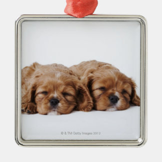 Two Cavalier King Charles Spaniel puppies Metal Ornament
