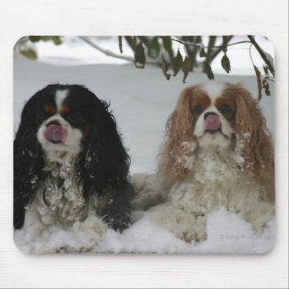 Two Cavaliers Mousepad