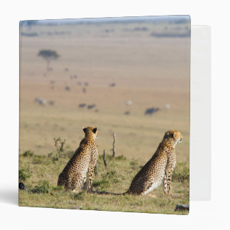 Two cheetahs on the look out vinyl binder