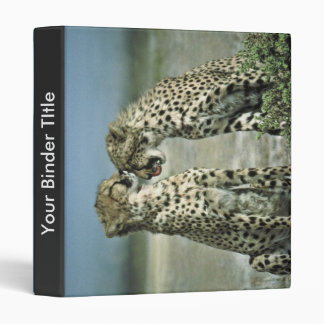 Two cheetahs sitting face to face binder