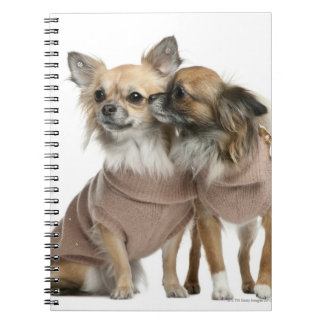 Two Chihuahuas dressed (2 years old) Spiral Notebook