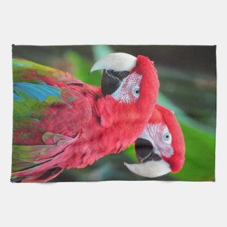 Two colorful macaw parrots kitchen towel