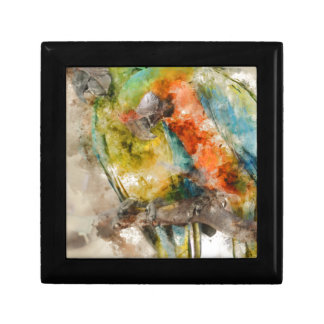 Two Colorful Macaws Gift Boxes