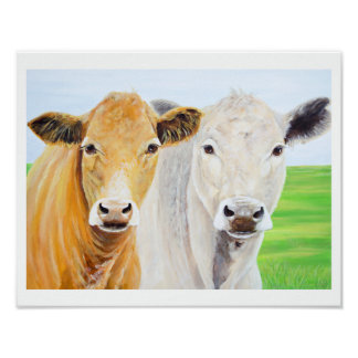 Two Cows for Oklahoma 11 x 14 Print