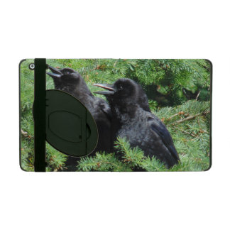 Two Crows iPad Cover