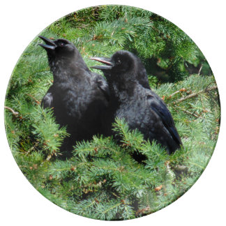 Two Crows Plate