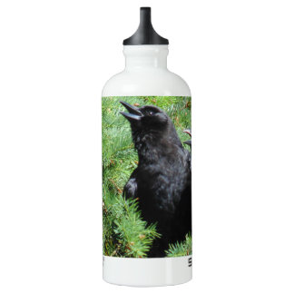 Two Crows Water Bottle