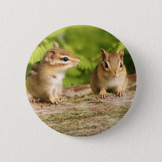 Two Cute Chipmunk Babies 2 Inch Round Button