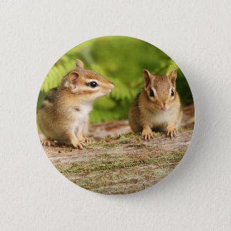 Two Cute Chipmunk Babies 2 Inch Round Button