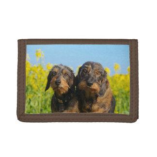 Two Cute Dachshund Dogs Dackel Head Portrait Photo Tri-fold Wallets