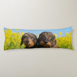 Two Cute Dachshund Dogs Dackel Portrait Photo Body Pillow