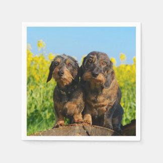 Two Cute Dachshunds Dogs Dackel Friends Pet Photo Paper Napkin