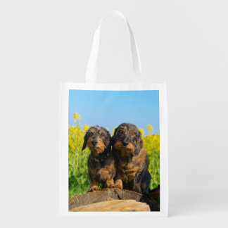 Two Cute Dachshunds Dogs Dackel Friends Pet Photo Reusable Grocery Bag