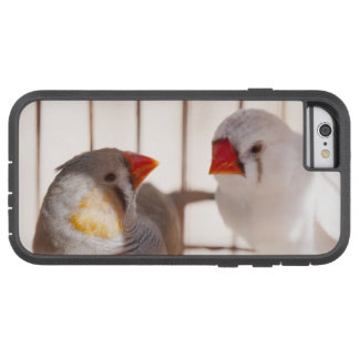 Two Cute Finch Birds in Cage Tough Xtreme iPhone 6 Case