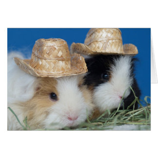 Two Cute Guinea Pigs Greeting Card