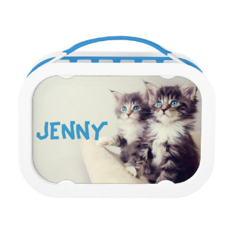 Two Cute Kittens Cat Lunch Box School