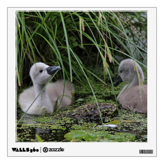 Two Cygnets Wall Decal