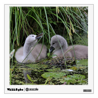 Two Cygnets Wall Sticker