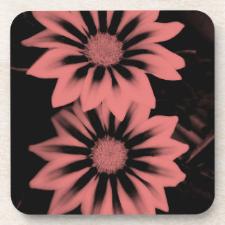 Two Dark Pink Gazania Flowers Coaster