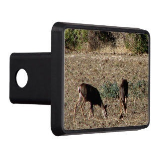 Two Deer in field photo Trailer Hitch Cover