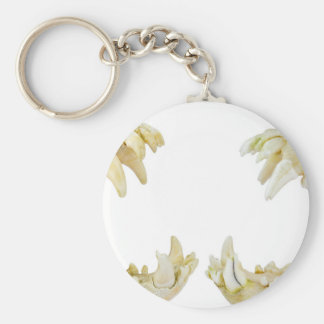 Two dogs skulls with open mouths basic round button keychain