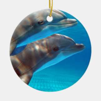Two Dolphins swimming Round Ceramic Ornament
