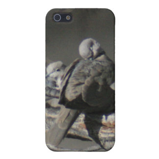 Two Doves 4/4s iPhone 5/5S Case