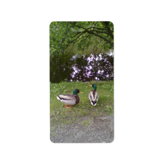 Two Ducks Personalized Address Labels