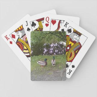 Two Ducks Poker Deck