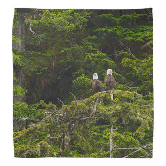 Two Eagles Perched Painterly Bandana