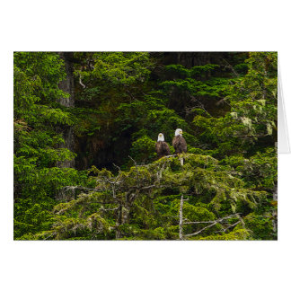 Two Eagles Perched Painterly Card