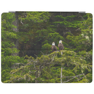 Two Eagles Perched Painterly iPad Cover