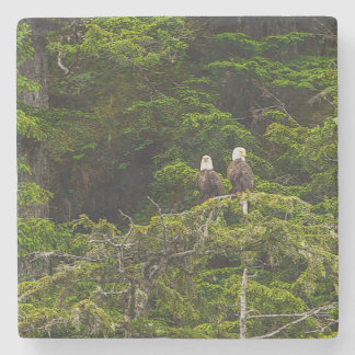 Two Eagles Perched Painterly Stone Coaster
