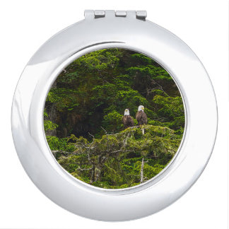 Two Eagles Perched Painterly Travel Mirrors