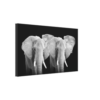Two Elephants - Wrapped Canvas