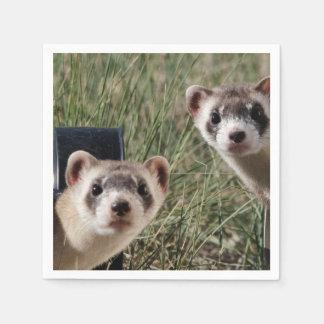 Two Ferrets Napkin