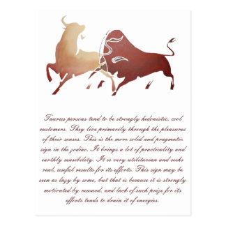Two Fighting Bulls Postcard