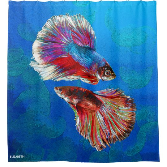 Two Fighting Psychedelic Colourful Fish