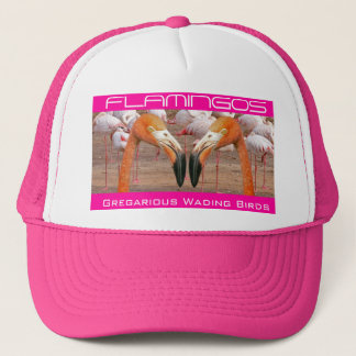 Two Flamingo Heads - (Hat) Trucker Hat