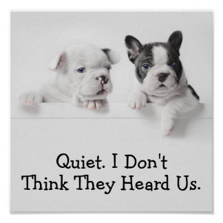 Two French Bulldog Puppies Peer Over A Wall Poster