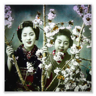 Two Geisha Vintage Japan in Blossoms Japanese Photo