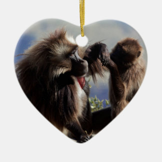 Two gelada baboons (Theropithecus gelada) Ceramic Ornament