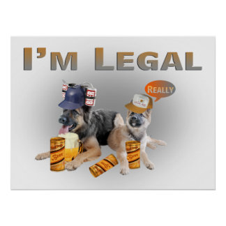 Two German Shepherd  Legal  Beer Drinkers Poster