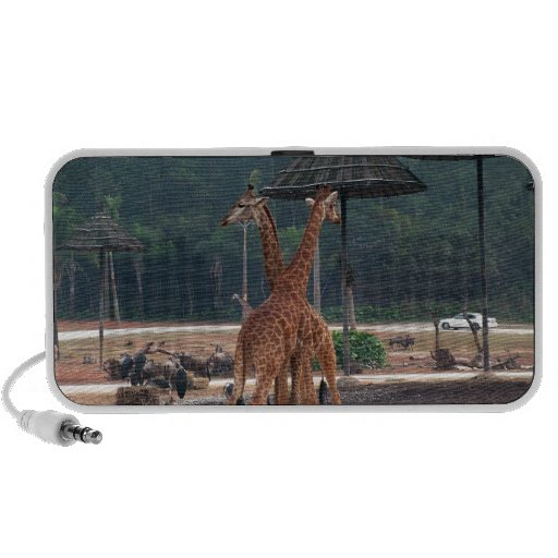 Two giraffes comforting each other in a zoo laptop speaker