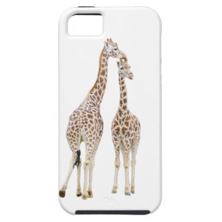 Two giraffes iPhone 5 cases
