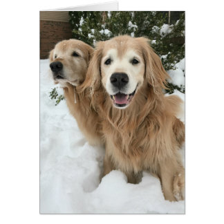 Two Golden Retriever Dogs in the Snow Happy Winter Card