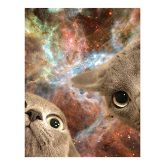 Two Gray Cats in Space Before a Nebula Letterhead