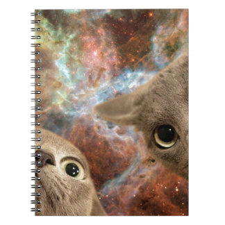 Two Gray Cats in Space Before a Nebula Notebook