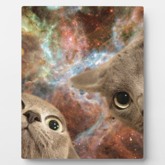 Two Gray Cats in Space Before a Nebula Plaque