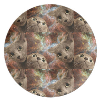 Two Gray Cats in Space Before a Nebula Plate